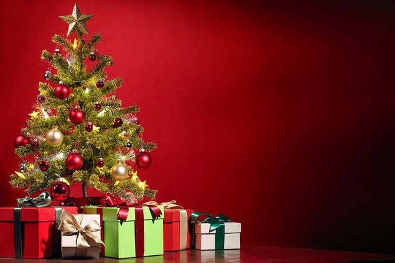 A Brief History of the Christmas Tree