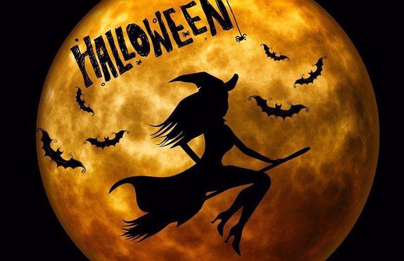 Funny Friday: Halloween Jokes