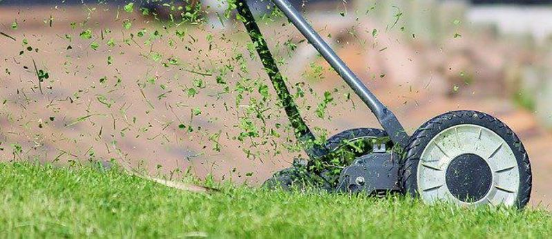 Funny Friday: lawns